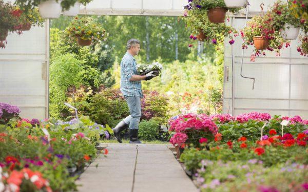 Folia na tunel ogrodowy – jaką wybrać?